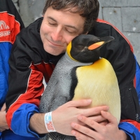 Dubai: A Perfect Place To Hug A Penguin!