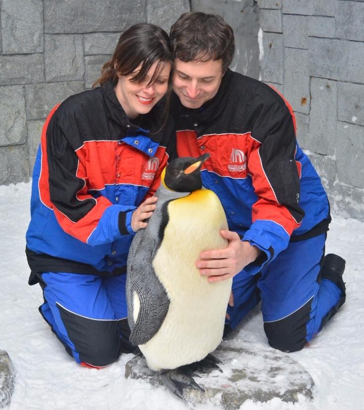 dubai_penguin_hug_2