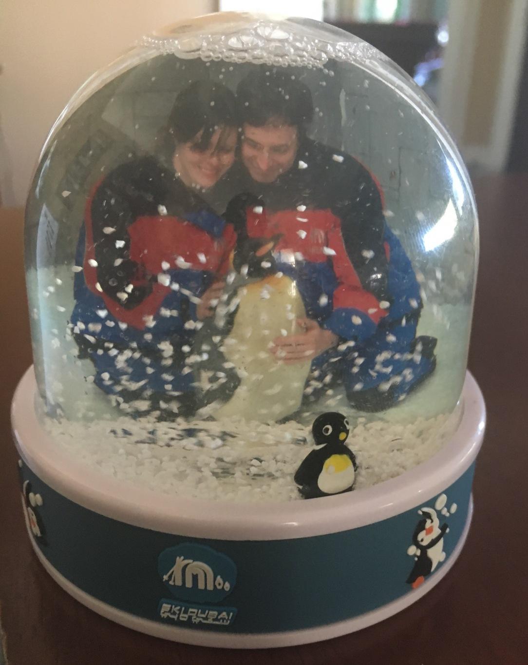 dubai_penguin_snow_globe
