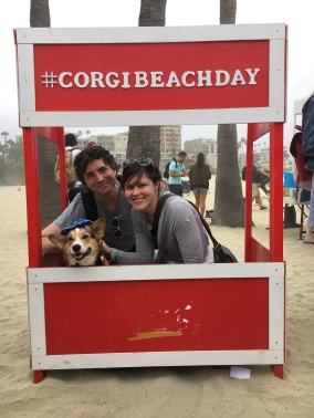 corgi_beach_day_35