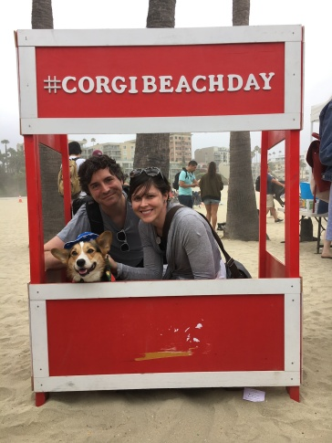 corgi_beach_day_35