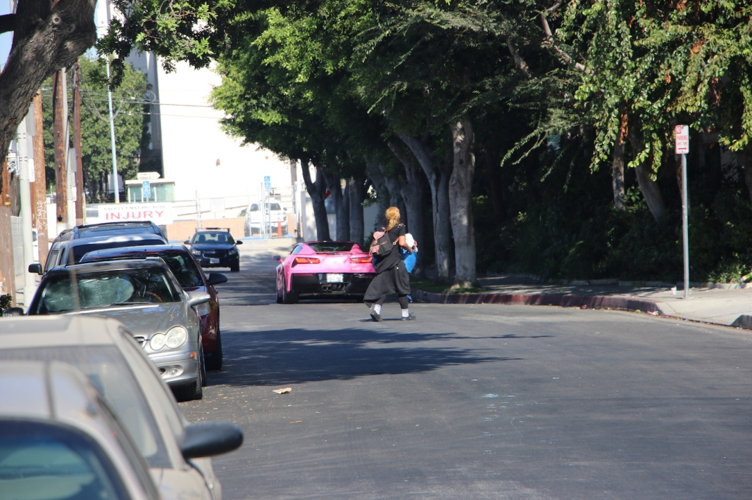 Angelyne_Corvette_12