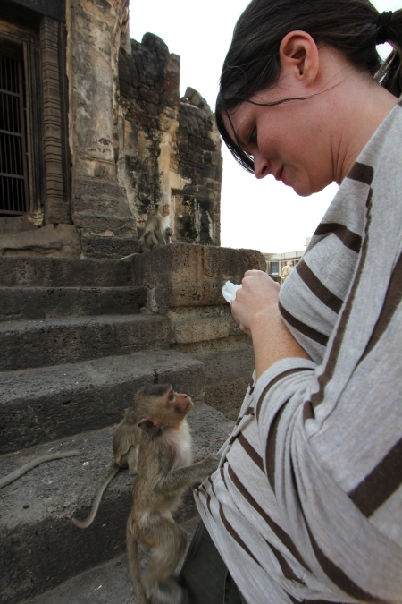 Lopburi_Monkeys_29