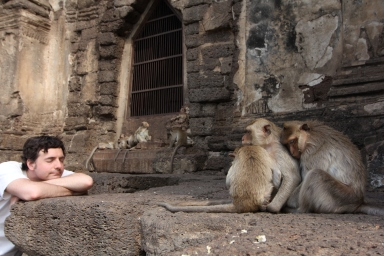 Lopburi_Monkeys_94