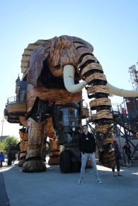 Nantes_Machines_Elephant_Carousel_16