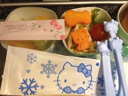 Hello-Kitty-Plane-9